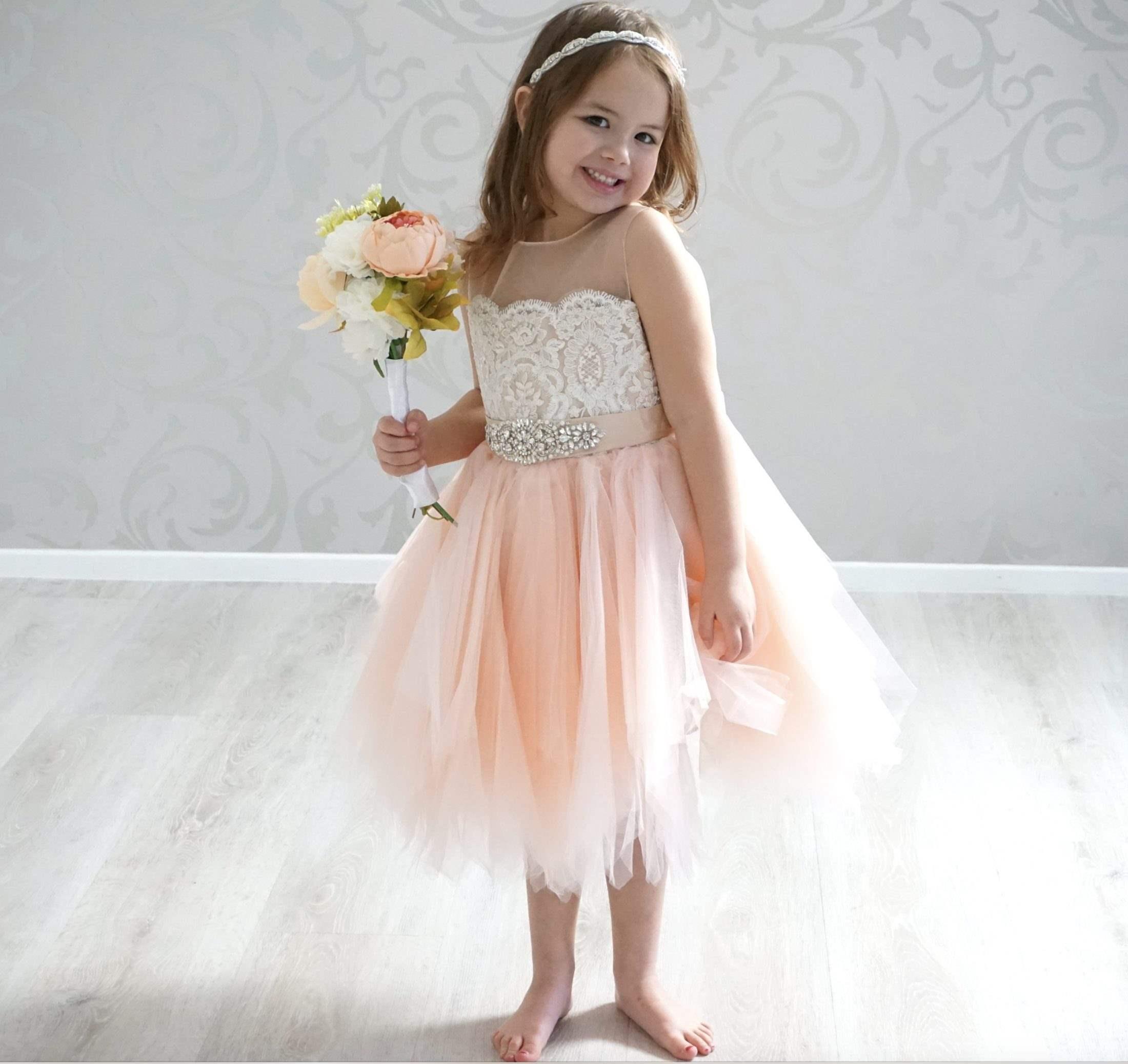 11c8a45ed3a0a Crowned Princess Dress {Blush} - Coco Blush Boutique - Where little ...
